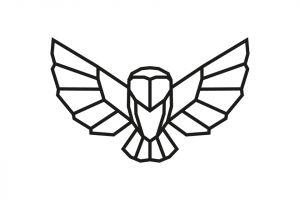 Owl Siluette